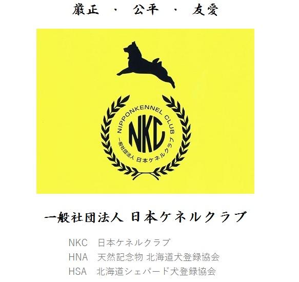 NKC-HPTOP01.jpg