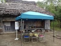 木の実の工作コーナー