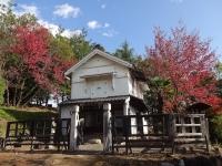 蔵座敷のまわりの紅葉