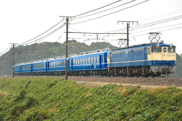 DSC_2540-3