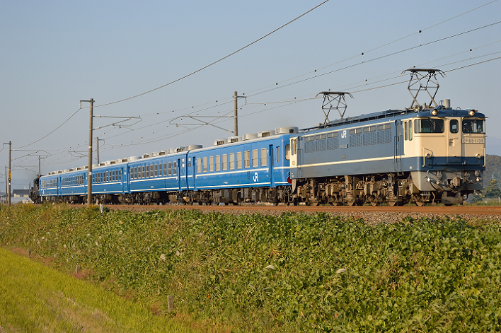 DSC_2557
