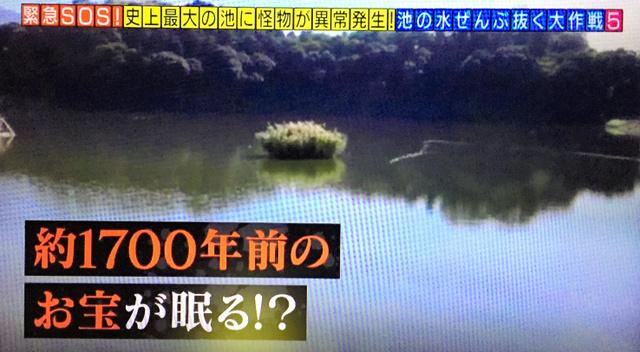 池の水ぜんぶ抜く テレビ東京 池の水ぜんぶ抜く&駆除の達人 箸墓古墳 奈良 かいぼり 外来種 ゴミ 駆除