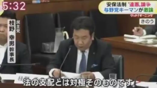 枝野幸男 立憲民主党 安保法制 憲法 憲法改正 憲法学者