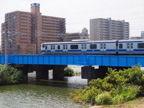 JR常磐線 E531系 電車【桜川橋梁】
