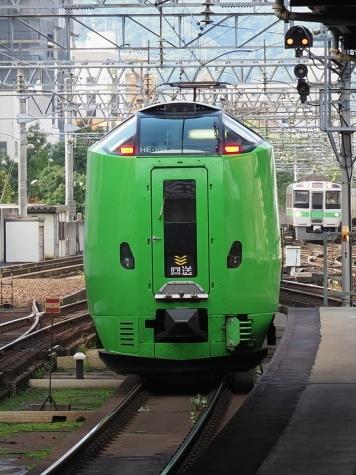 JR北海道 789系0番台 電車 特急ライラック(旭山ラッピング)【札幌駅】
