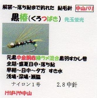 く黒椿先玉蛍光1枚002