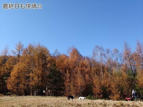 20171105_22.jpg