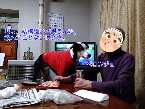 20171125_28.jpg