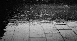 雨ばかりの一週間