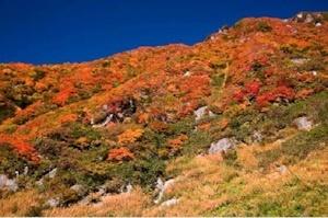 秋は山粧う