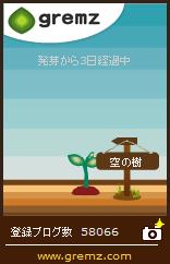 20171019_空の樹23本目_3日目.jpg