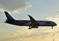 787-8 【ANA/JA802A(特別塗装機[通称・鯖塗装])】②(20170928)