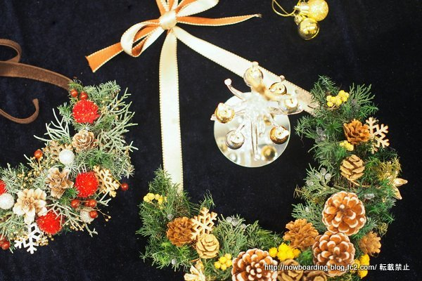 日比谷花壇クリスマスハーフリース