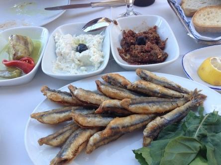 日本よりトルコで食べたほうが回数多いなイワシ