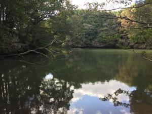 ふれあいの森2017-2