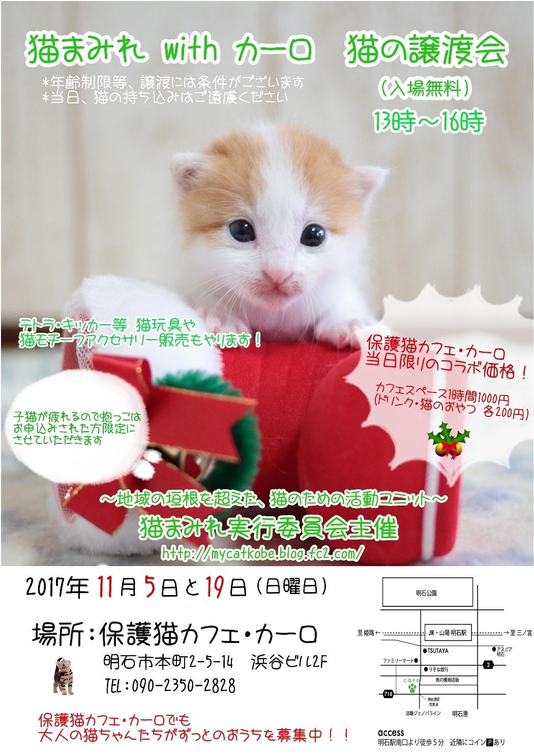 猫まみれ譲渡会11月ブログ掲載用