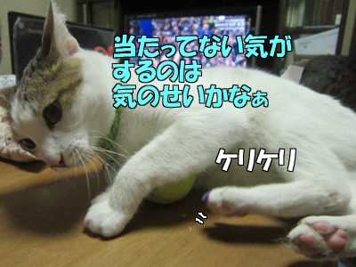 171221-05.jpg