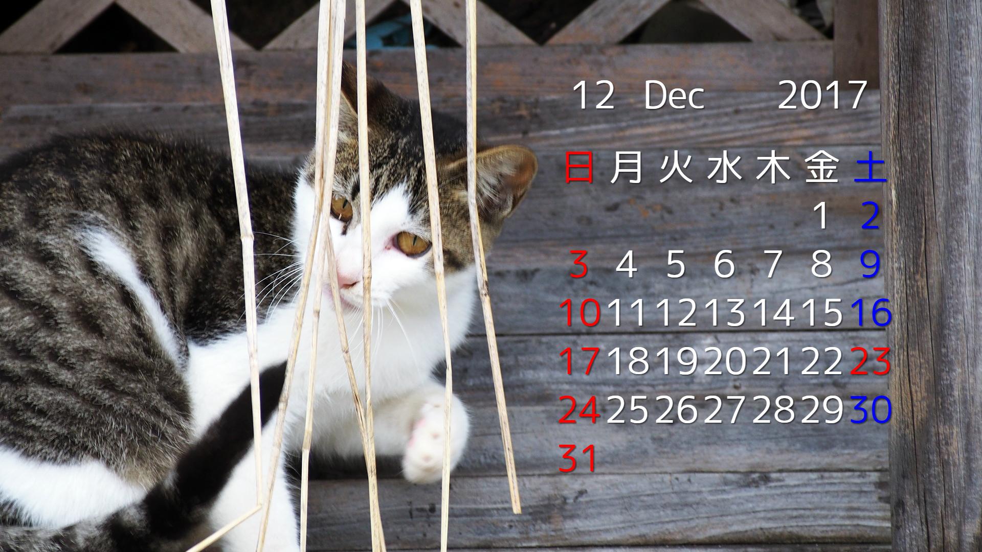 2017年12月 猫デスクトップカレンダー