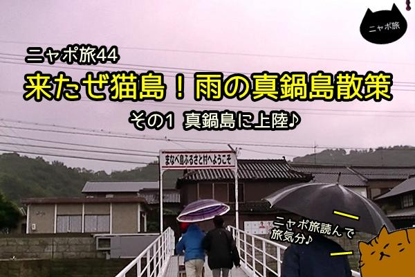 manabejima_cat