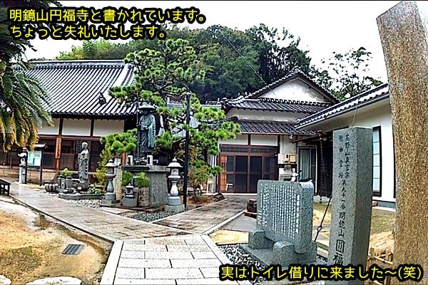 ニャポ旅44 雨 真鍋島 円福寺 6