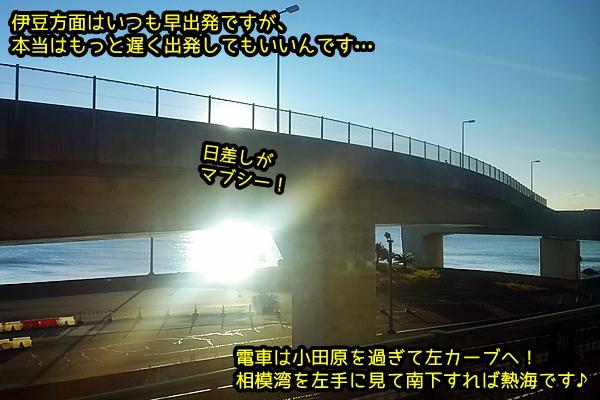 ニャポ旅46 伊豆下田 その1