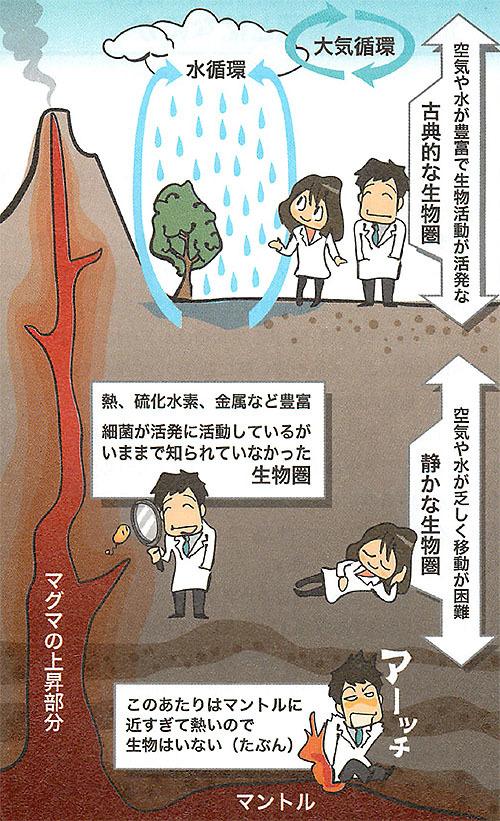 海底下2キロメートルの細菌