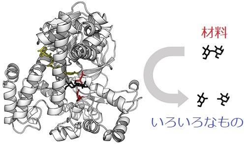 ヴォイニッチの科学書 第677回 分子コンビナート