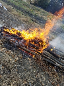 171225焚き火