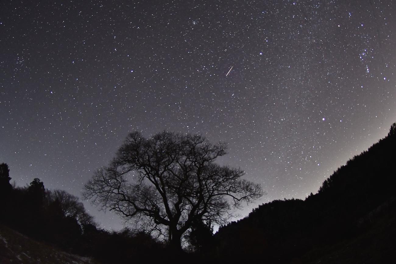ふたご座流星群 254-2gs