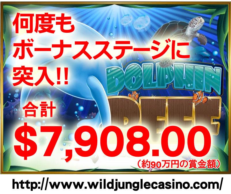 Dolphin Reef_JP