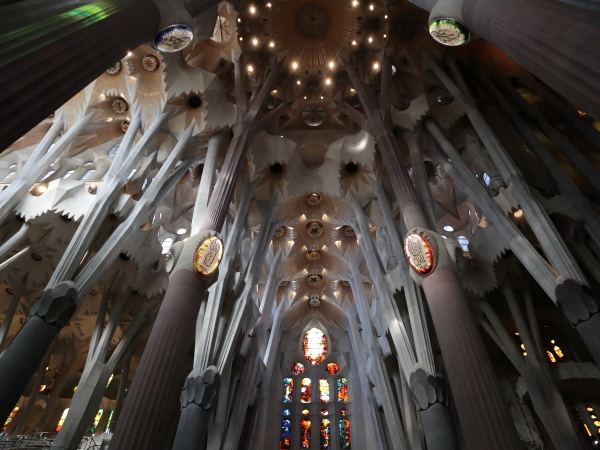 サグラダ・ファミリア内部柱と天井