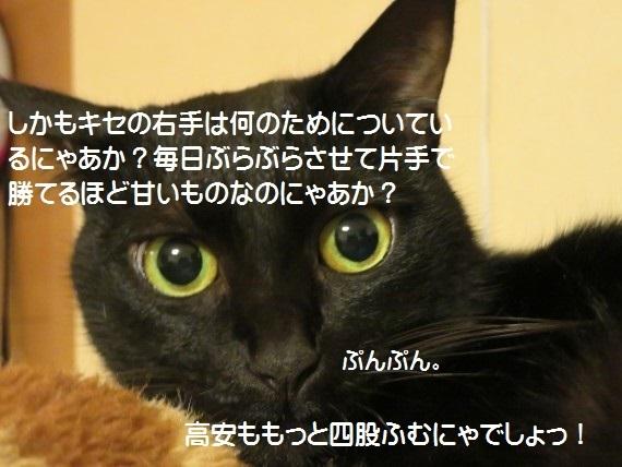 20171121-07.jpg