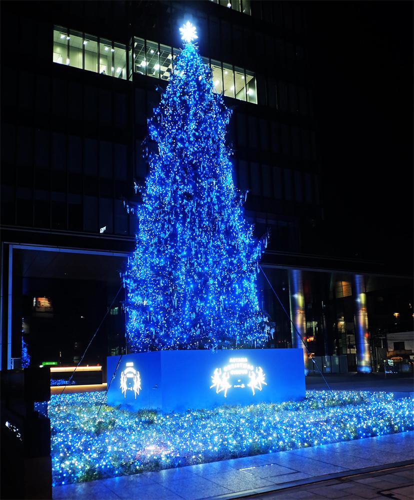 エイベックス本社クリスマスツリー