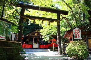 samuraicapenjp2.jpg
