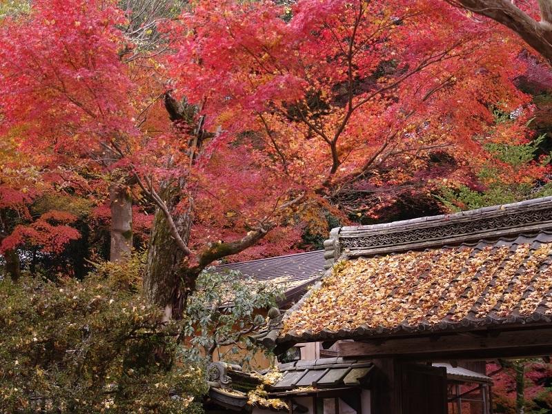 石山寺 その2
