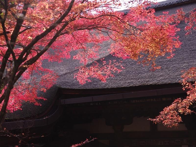 石山寺 その5