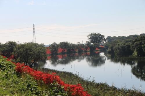 津屋川堤防
