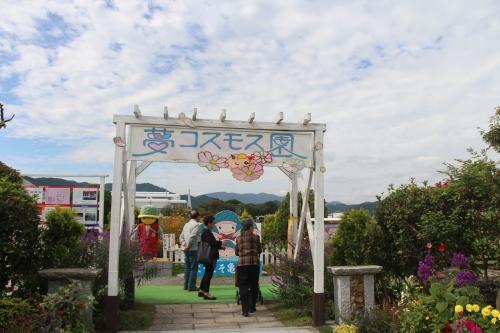 夢コスモス園