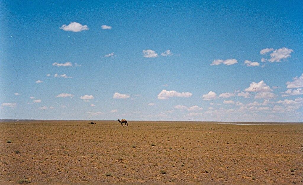 モンゴル・ウムヌゴビ県での風景