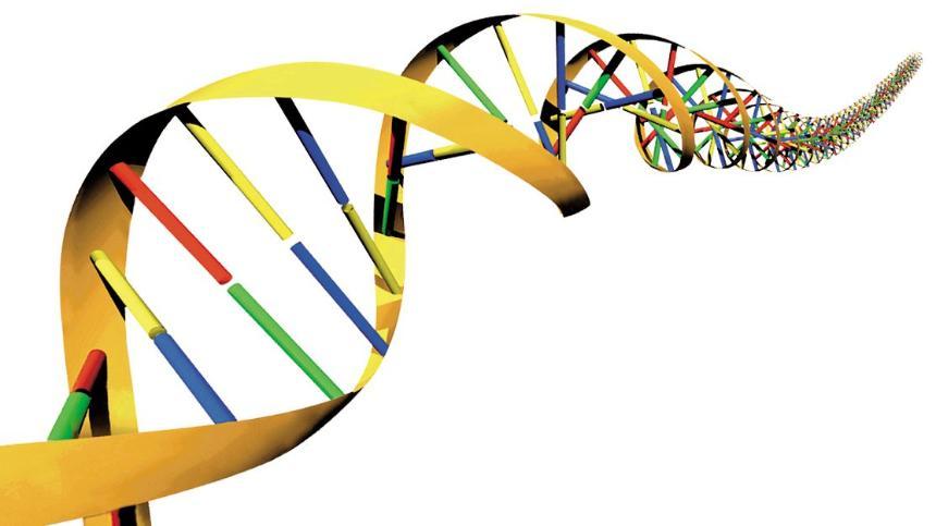 ゲノムや遺伝子といった「データ」から、将来、分かってしまうこと