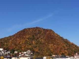 円山 紅葉