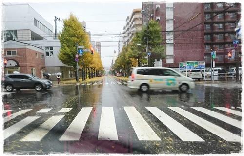 台風DSC_2651