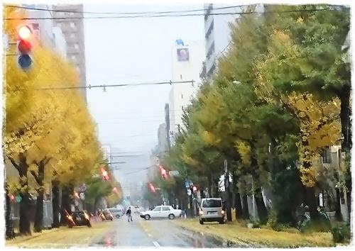 台風DSC_2652