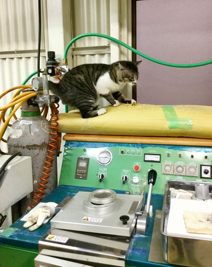 大田区 池上 パンタレイ panta rhei イワキ精工 シルバー 真鍮 アクセサリー ギャラリー 工場長 猫