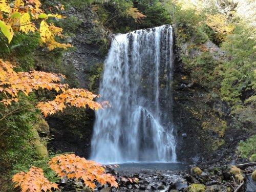 06善五郎の滝