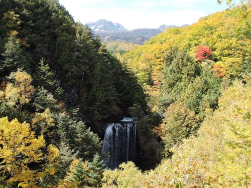 12善五郎の滝