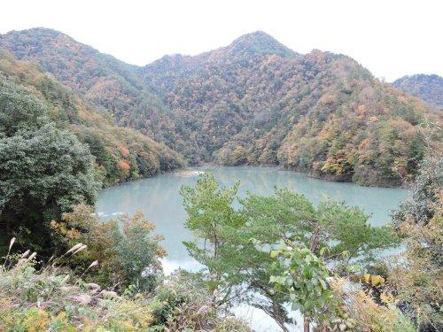 8天龍村北部