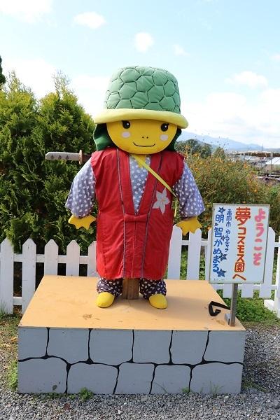 2017.11.05 亀岡夢コスモス園-2
