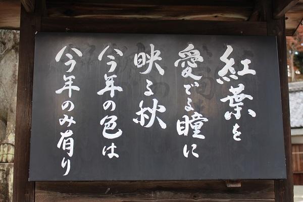 2017.12.15 柳谷観音-2