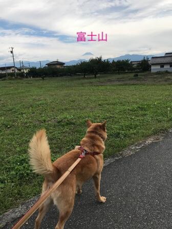fc2blog_20171019162509e81.jpg